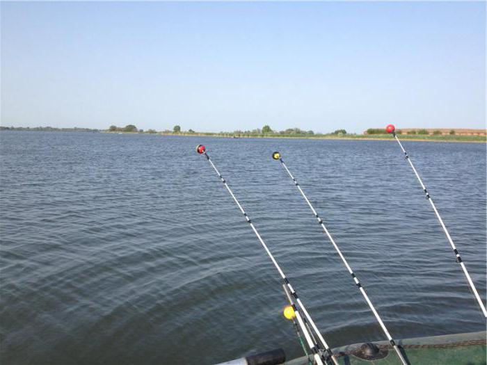 рыбалка в. полтавський області