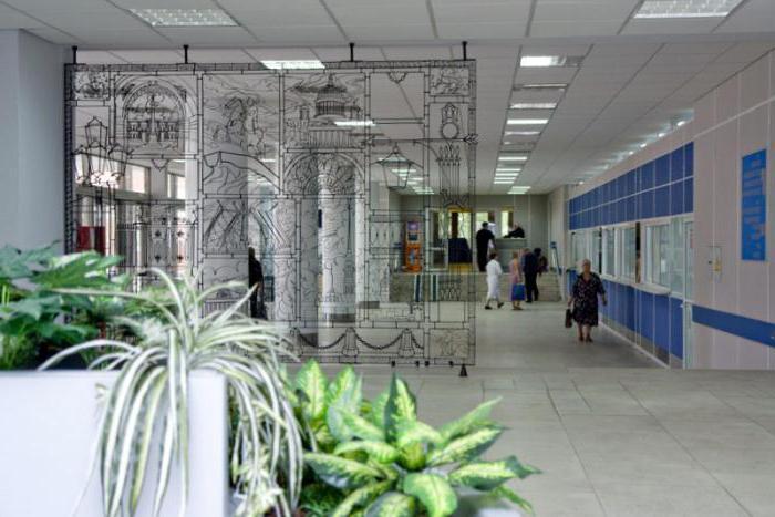 31 больница на крестовском острове