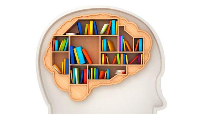 изучение памяти в психологии