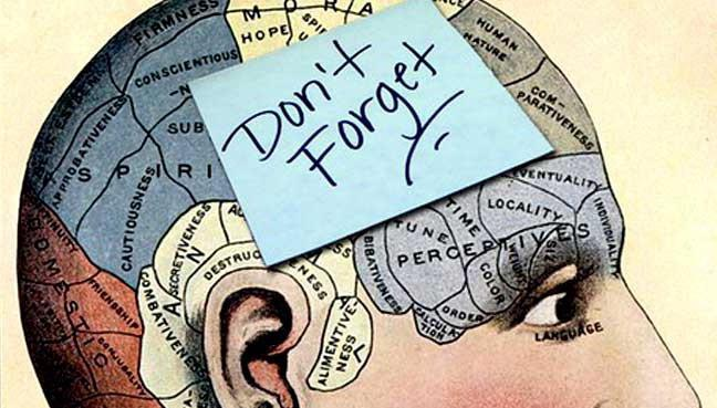 законы памяти в психологии