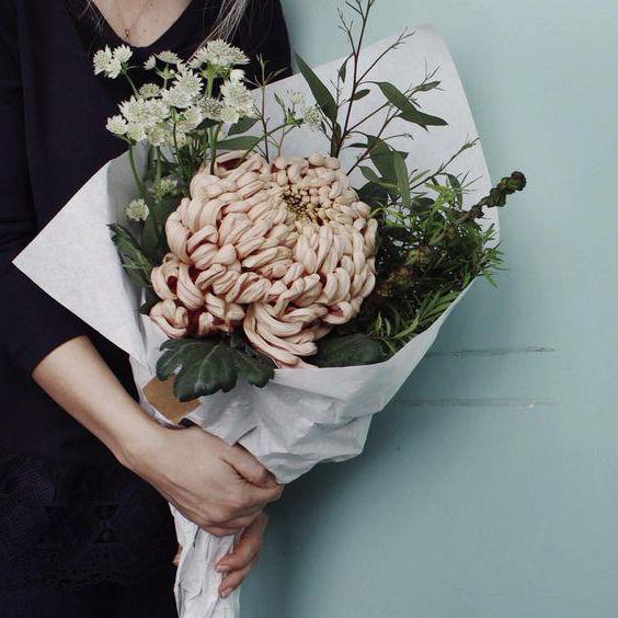 какие цветы подходят стрельцам