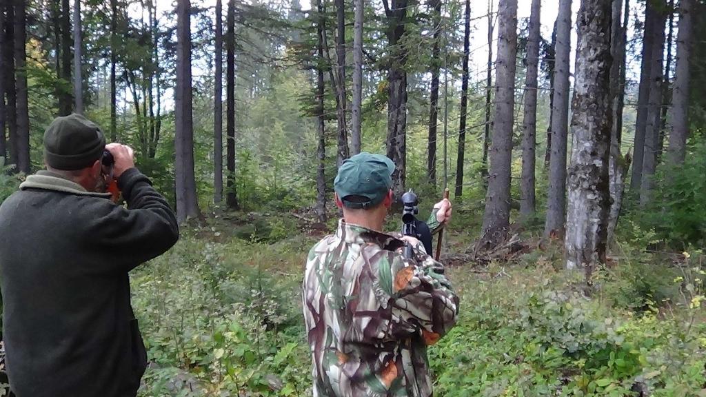 Индивидуальная охота, загонная охота