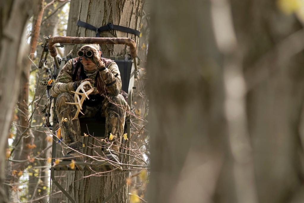 Способы охоты, виды охоты