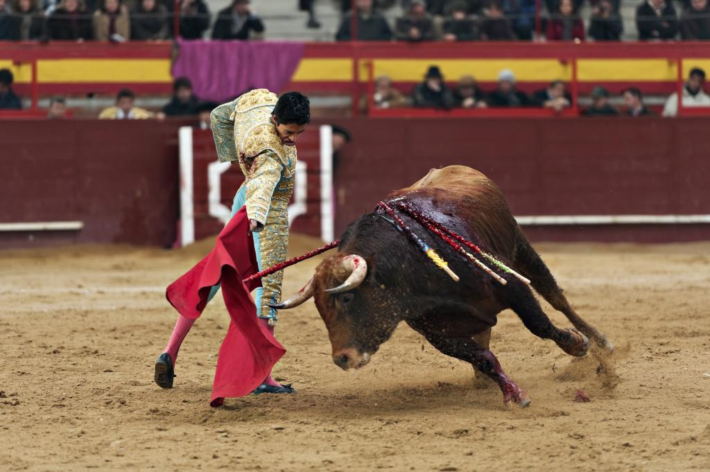 коррида - бой тореадора с быком