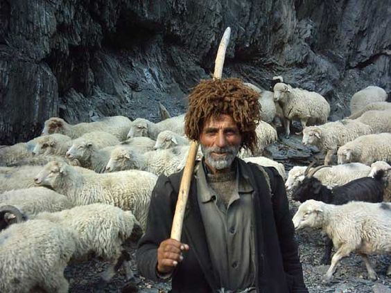 чабан на Кавказе
