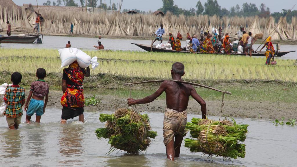 Крестьяне в Бангладеш