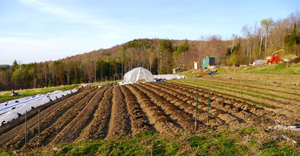 Весенние работы в поле в огороде