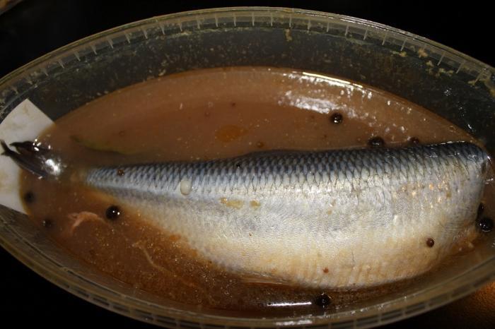 как правильно засолить речную рыбу