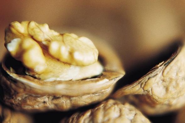 варенье из орехов грецких фото