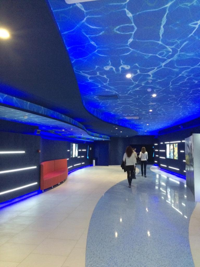 Кинотеатр в тц водный