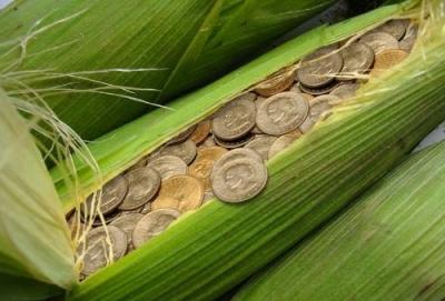 кредит кукуруза