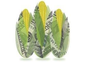 кредит кукуруза отзывы