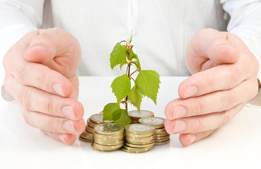 цели инвестиционного проекта