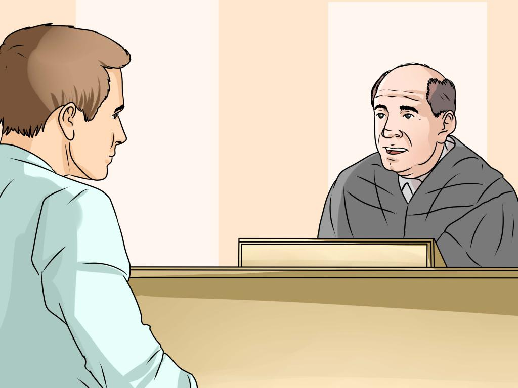 Специальность судья