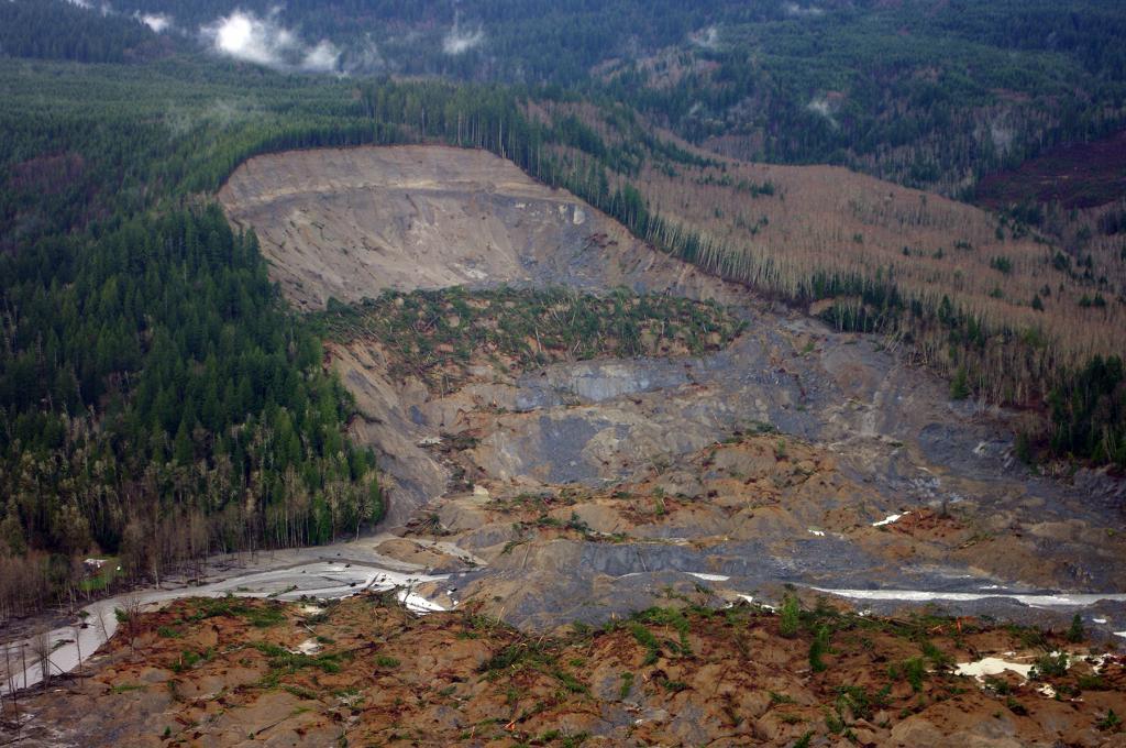 В этом месте произошел обвал, в результате которого пострадало несколько десятков деревьев