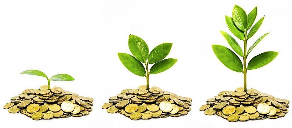 растущий капитал