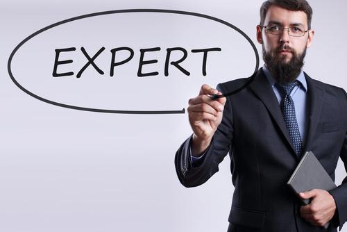 обязанности главного эксперта