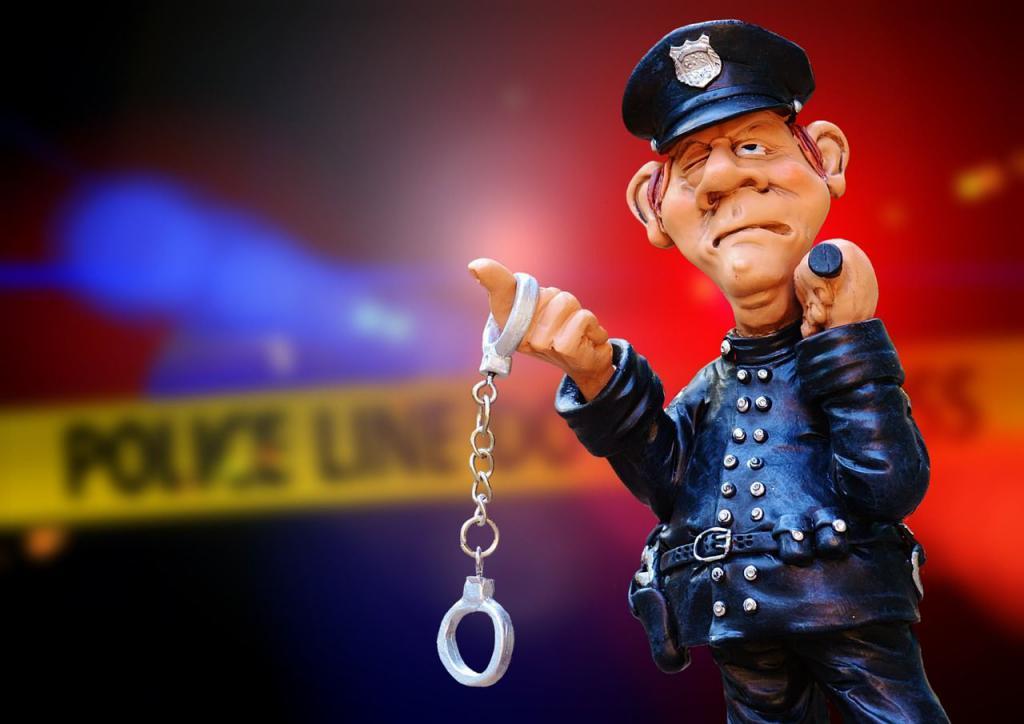 детерминация и причинность преступности