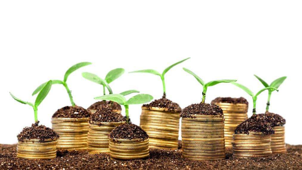 понятие и виды инвестиционных проектов
