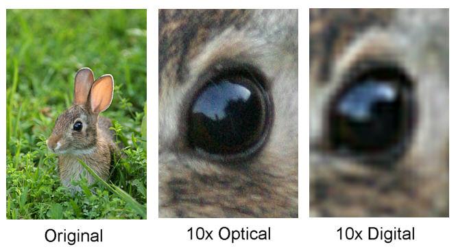 Разница между оптическим и цифровым зумом
