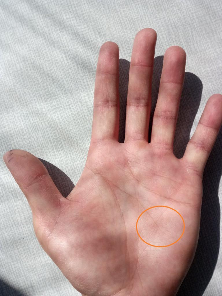 Линия Головы на левой руке