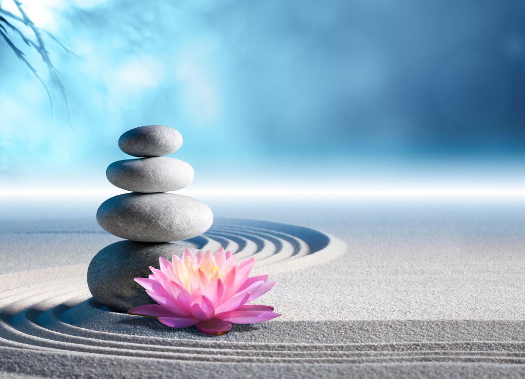лотос, камни и песок