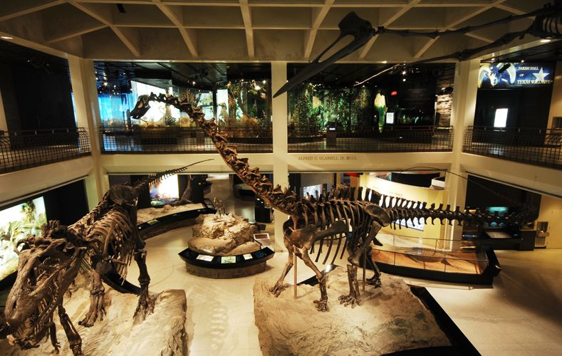 Хьюстонский музей