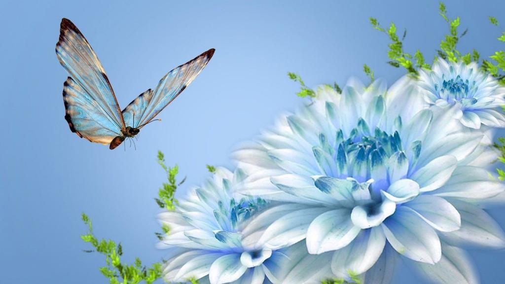 бывают ли голубые хризантемы
