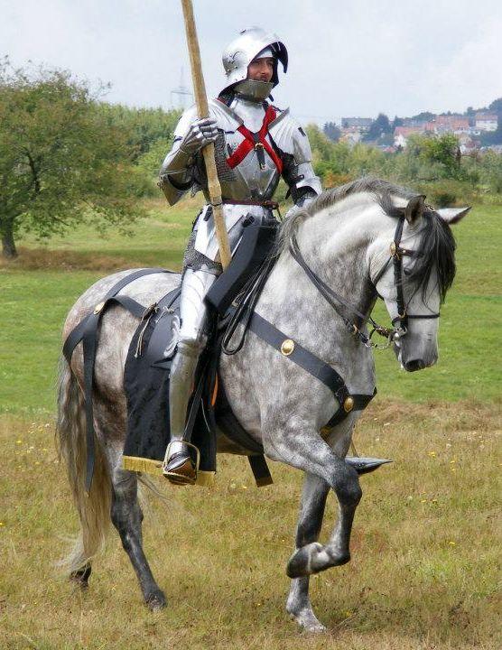 Мерин конь аргамак 17 век