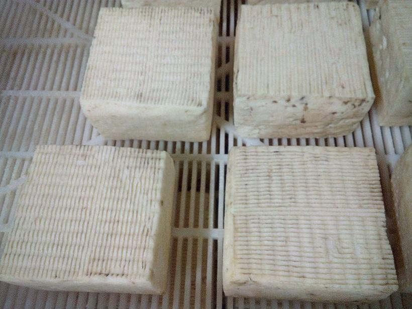 Пороки сыра: возможные причины