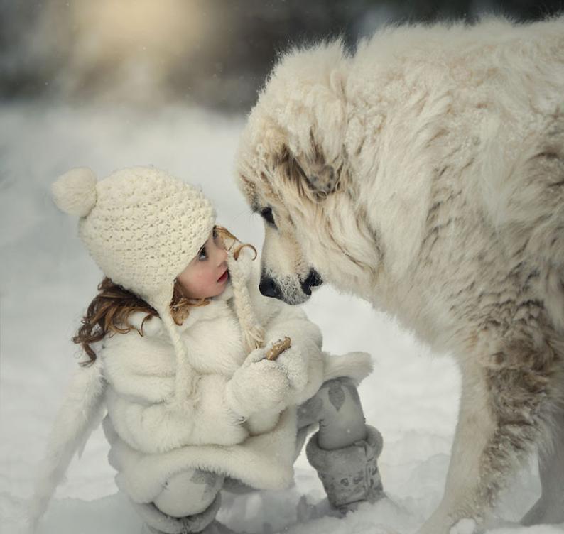 Ребенок и среднеазиатская овчарка