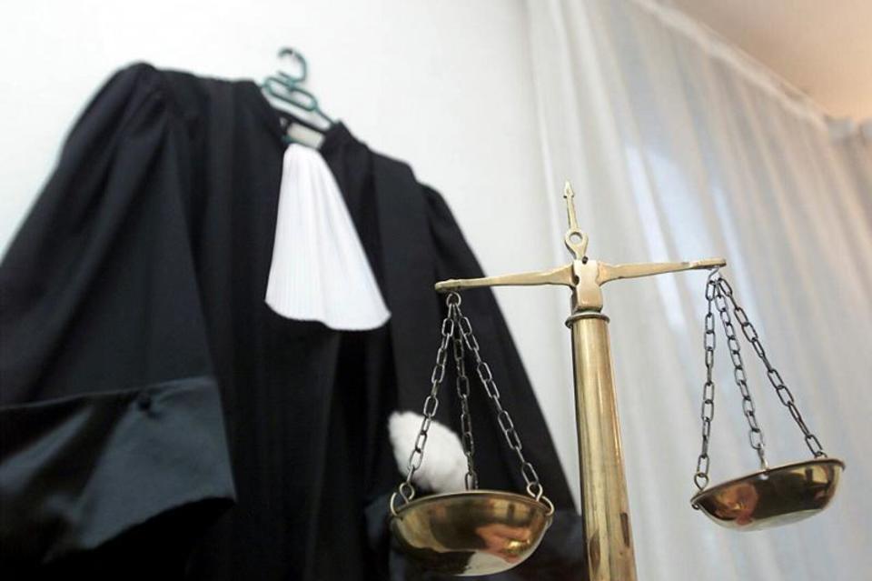 специалист в суде