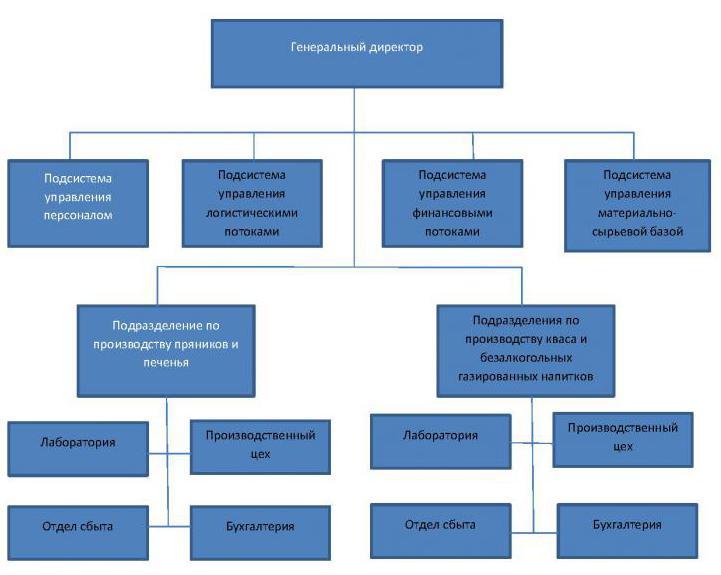 Дивизиональная организационная структура управления