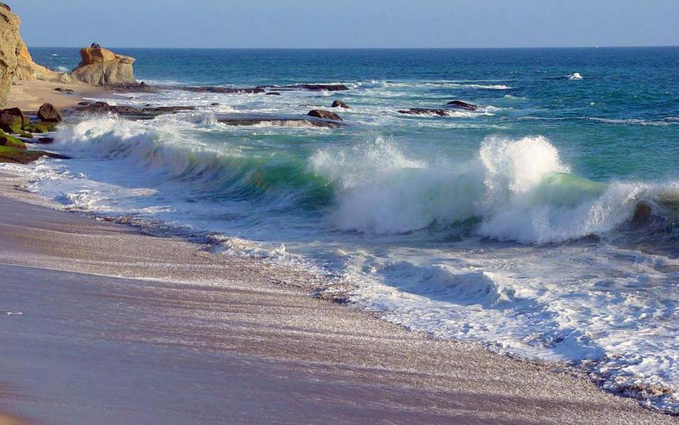сонник берег моря волны