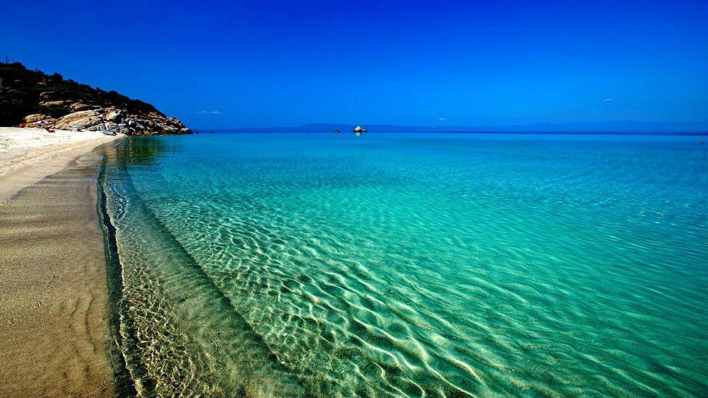 сонник красивый берег