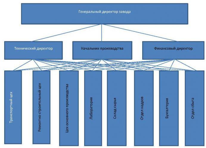 Функциональная организационная структура управления предприятием
