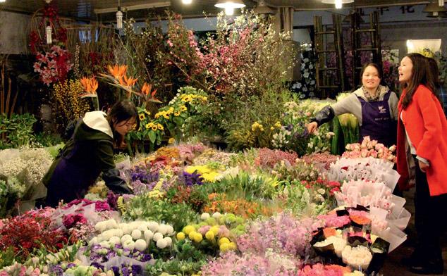 рынки флоры и фауны