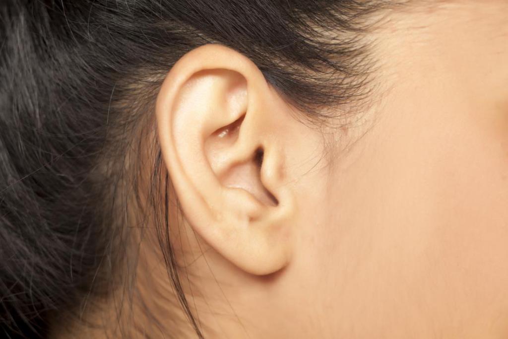 уши эрогенная зона