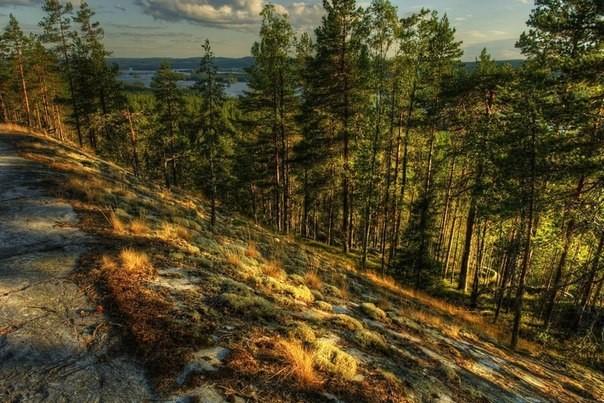 Калевальский национальный парк: фото