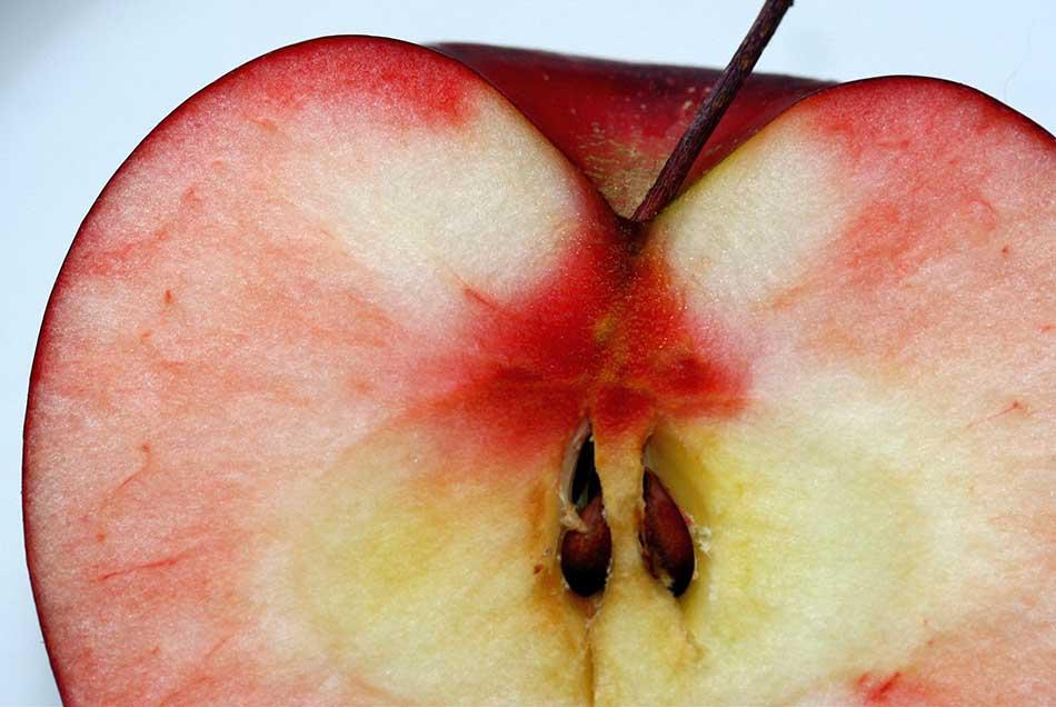 польза и вред яблочных семечек