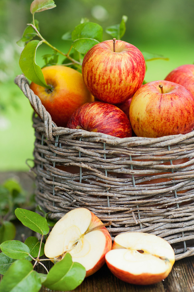 в чем польза яблочных семечек