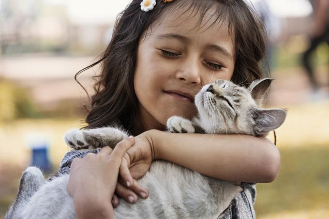 Почему кошка лижет голову хозяина