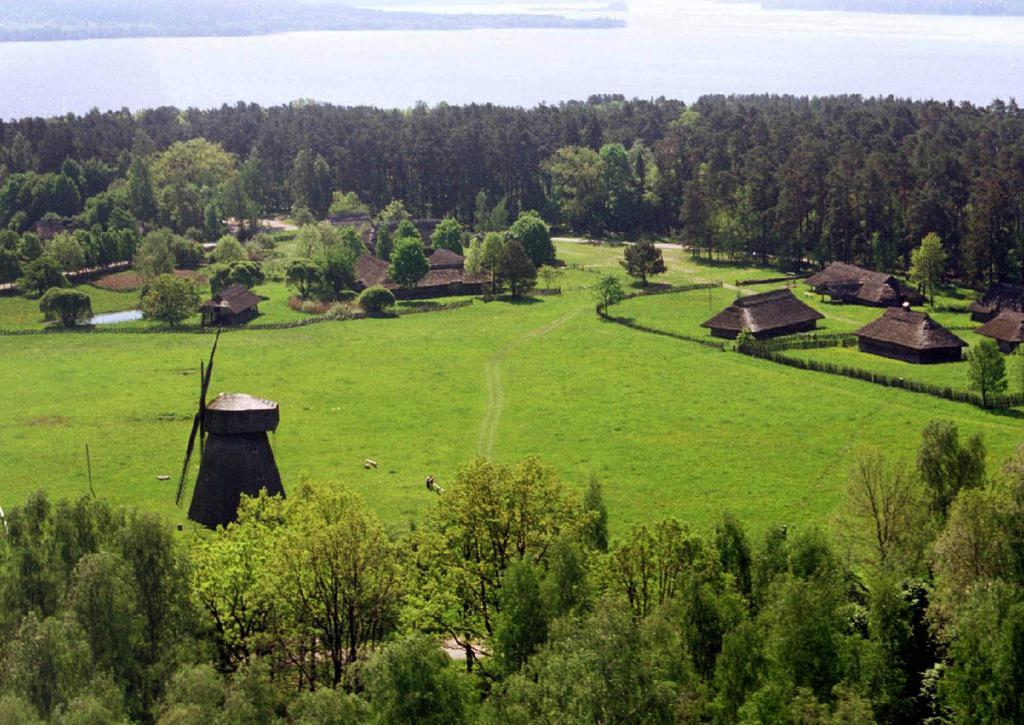 литовские поля