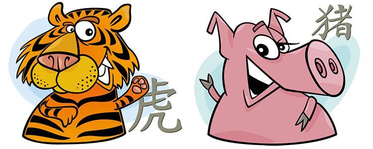мужчина свинья женщина тигр совместимость