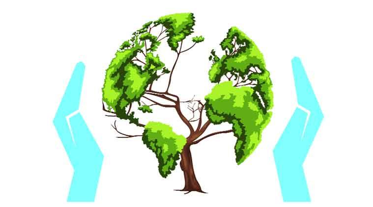 правовая охрана лесов