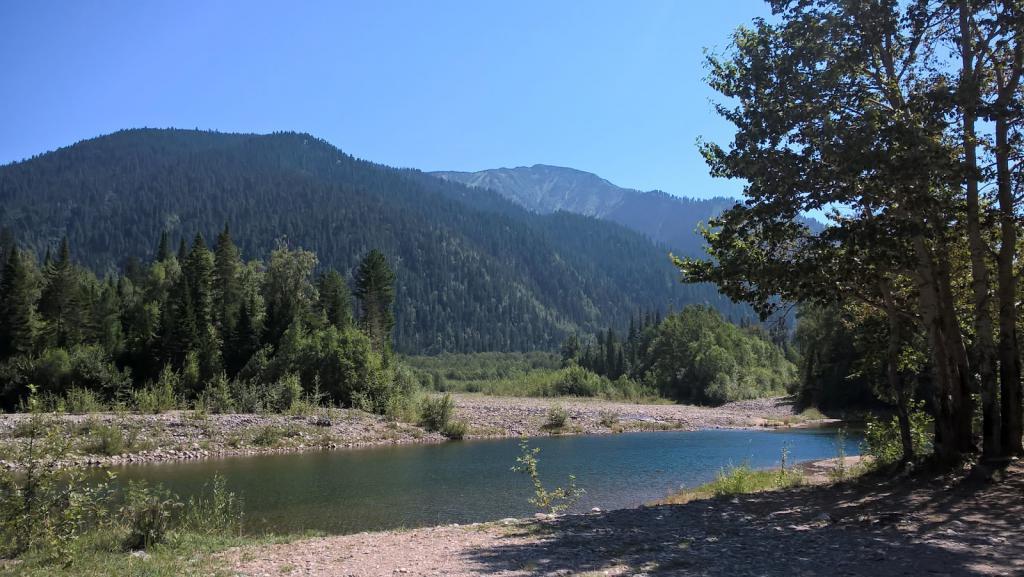 спокойное течение реки