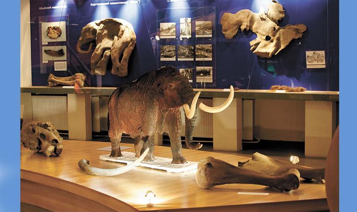 Экспозиция Музея мамонта