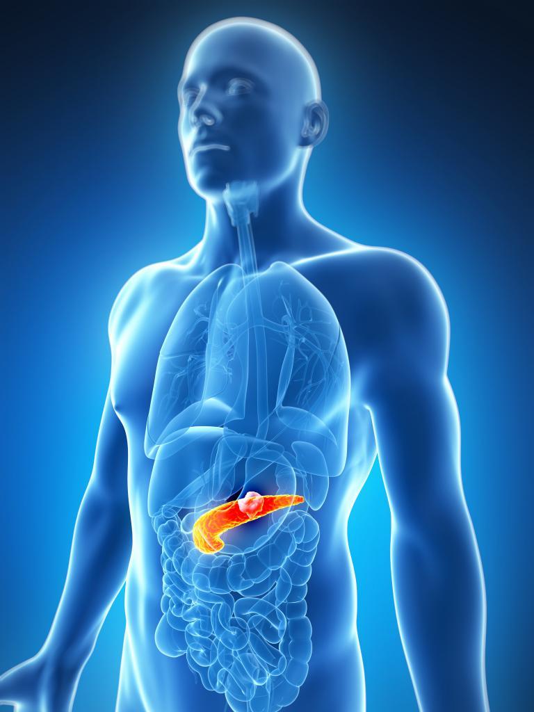 какие продукты можно при панкреатите поджелудочной железы