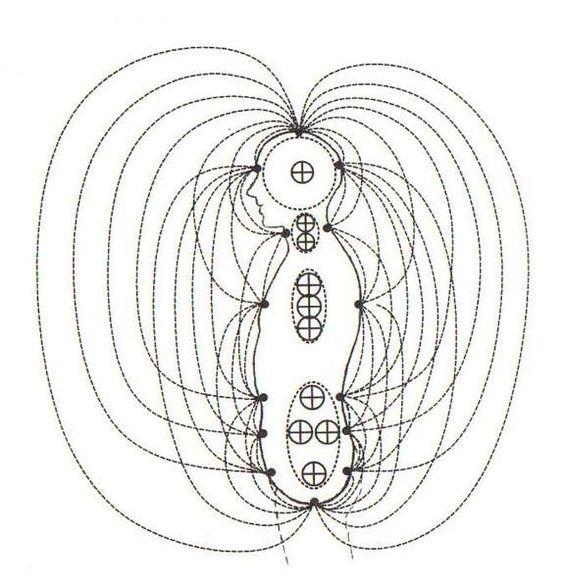 Циркуляция энергии вокруг тела