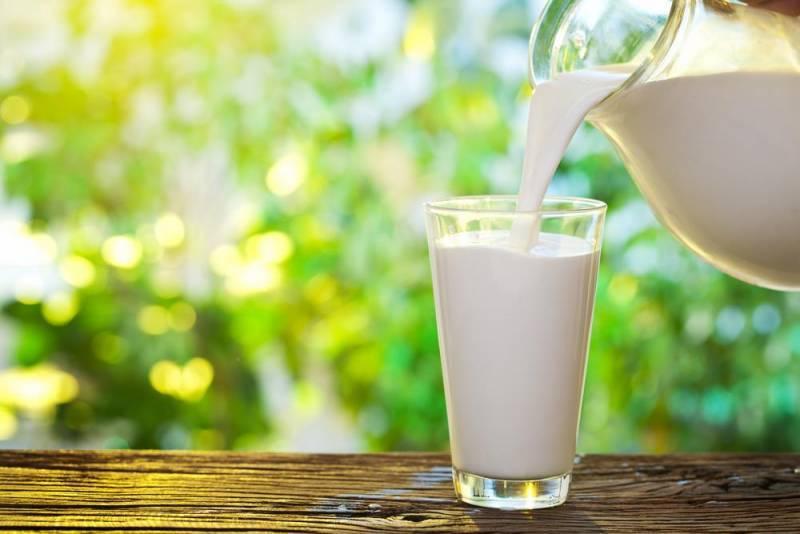 Можно ли пить молоко при похмелье